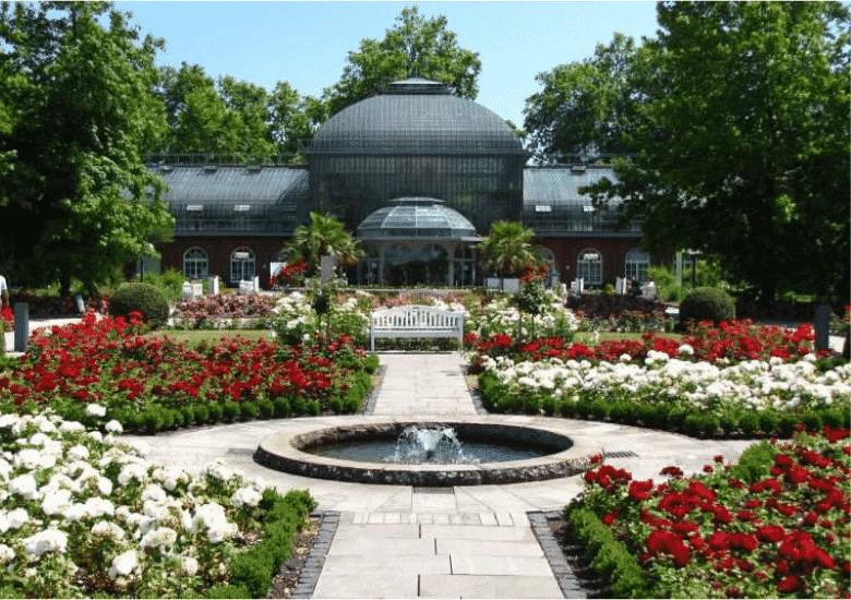 Frankfurt Attractions